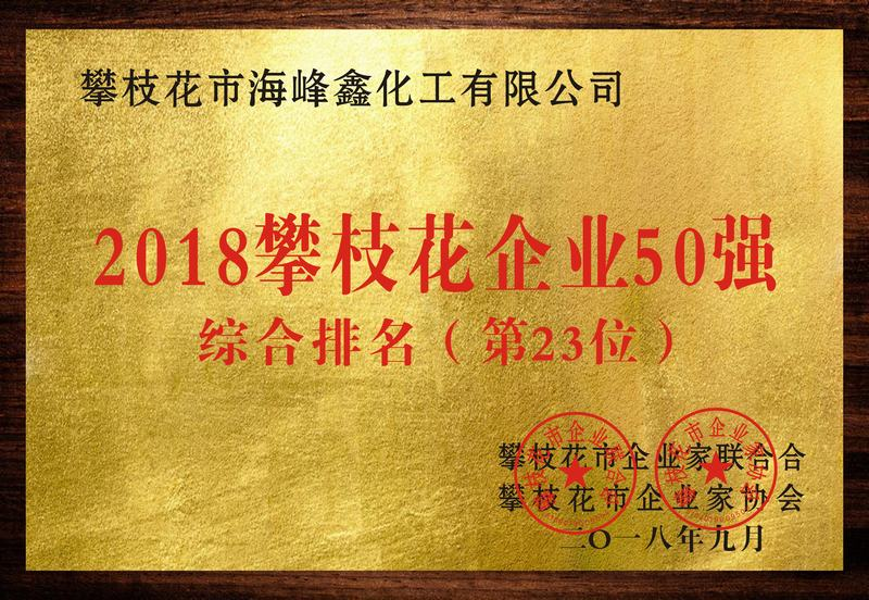 The 23rd largest enterprise in terms of comprehensive strength in Panzhihua City